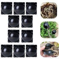 Planters & Pots 10pcs Plastic Case Propagation Box Grafting Rooter Growing High-pressure Breeding Ball Fruit Plant Tree Rooting Root