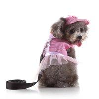 Dog Collars & Leashes No Pull Harness Leash Designer And Small For Dogs Pitbull Honden Halsbanden En Harnassen