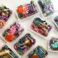 Box Natural Dried Flower Dry Plants Real Flowers Candle DIY Epoxy Jewelry Making Accessories Craft Necklace T9B0 Decorative & W Wreaths