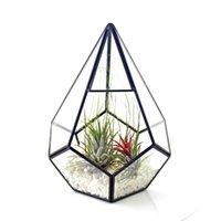 Cam Vazo Geometrik Asılı Teraryum Ev Masa Dekoru Tencere Etli Fern Moss Minyatür Peri Bahçe Konteyner için Piramit Elmas Şekil Ekici (Hiçbir Bitkiler)