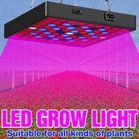 الصمام تنمو ضوء phyto مصباح كامل مصنع الطيف النمو للزراعة العمودي الخضار بذور زهرة النباتات الداخلية