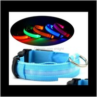 Collars Leashes Supplies Home & Garden Drop Delivery 2021 Led Nylon Night Light Glow In The Dark Small Pet Leash Dog Flashing Safety Collar R