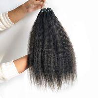 루프 마이크로 링 헤어 익스텐션 킨키 스트레이트 말레이시아 인간의 머리카락 100 스트랜드 / 자연 색상 세트