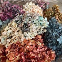 7g about 3~ 4cm Flower Petal, Fresh Flowers Preserved Real Natural Dried Wood , Eternal of Large Leaves