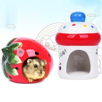 Small Animal Supplies Pet Cartoon Fruit Shape Hamster Guinea Pig Chinchilla Hideout Cage House Summer Cool Animals Play Sleeping Ceramic Nes