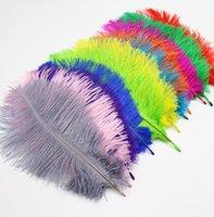Белые страусиные перья для свадебных принадлежностей для свадебных принадлежностей Центр Центр Партии Предполагается, что выступление Performance Support Ju0905