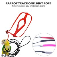 Other Bird Supplies Adjustable Parrot Harness Leash Ultralight Anti-bite Flying Traction Rope Training Leashes Outdoor Carrying