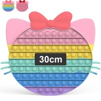 30cm Pop Fidget Toys Huge Large Popit Rainbow Giant Biggest Jumbo Push Bubbles Stress Reliever Squeeze Sensory Toy for Kids Teen Adults, Big Kitty