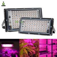 50W 100W LED Grow Lights 220V Full Spectrum Phyto Light con lámparas de plantas de enchufe para la semilla de la flor hidropónica del invernadero