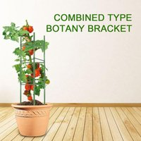 Decorative Flowers & Wreaths Tomatoes Cage Assembled Plant Vegetable Trellis Support Stakes For Indoor Pot Outdoor Use Garden PR Sale