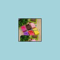 Verpackung Schmucksachen Niedlicher Großhandel Candy Color Box, Geschenk Halskette, Armband Boxen, Papier Geschenkboxen für Schmuckanzeige Drop Lieferung 202