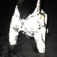 Luminous reflexivo pet coats à prova de vento à prova de chuva casacos de cachorro roupas de pelúcia schnauzer bulldog cães de gato capa de chuva
