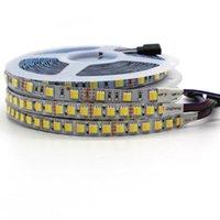 스트립 / 5025 CCT LED 스트립 라이트 60/120 LED / M 1 칩 테이프 컬러 Ajustable DC 12V 24V in 1 칩 테이프