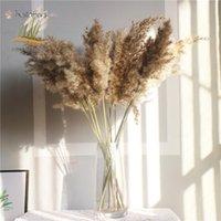 진짜 팜파스 잔디 장식 자연 말린 꽃 식물 결혼식 꽃 마른 꽃 꽃다발 솜털 솜털 홈 장식 빠른 배송 BM26