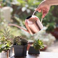 500 ml d'acier inoxydable Longue Pot Verte Plante Verte Can Bouilloire Golden Petit arrosage Outils de jardinage Y200106 681 R2