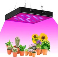 2835 LED Grow Light 50W 80W Full Spectrum Phytolamp For Indoor Greenhouse 85-265V Phyto Growth Plant Lamp