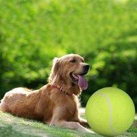 Katze Spielzeug 24 cm Riesige Tennisball Für Haustier Chewtoy Große Aufblasbare Zubehör Outdoor Quietschende Hundehunde Haustiere Zubehör