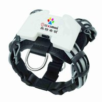Dog Collars & Leashes CC Simon USB Rechargeable Led Harness Multicolor