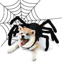 Czarny pająk Kreatywny Kostiumy Kostiumy Dress Up Halloween Mały Dog Odzież Zabawna Osobowość Soft Puppy Odzież