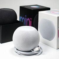 مكبرات الصوت المصغرة المتكلمين الذكية ل HomePod المحمولة بلوتوث صوت مساعد مضخم صوت مركبتي باص ديب باس ستيريو C نظام الصوت السلكي
