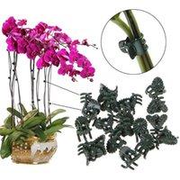 1Set = 50 stücke Kunststoff Fix Clips Pflanze Orchidee Stamm Rebe Träger Gemüse Farm Blumen Obst gebunden Bündel Zweig Klemmung Gartenarbeit NHF8516