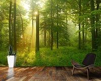 바탕 화면 Papel 드 Parede 안개가 자욱한 너도밤 나무 숲 태양의 3D 벽지 벽화, 거실 TV 벽 침실 주방 서류 가정 장식