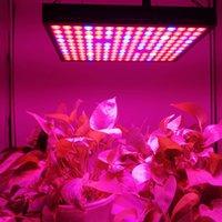 600 W SMD 3030 Cips LED Işık Büyümek Tam Spektrum Kırmızı / Mavi / Beyaz / UV / IR 410-730nm Kapalı Bitkiler ve Çiçek İfadesi Sera Çadırı