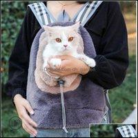Katze liefert Home Gardencat Carrier, Kisten Häuser Plüsch Hund Pet Handtasche Rucksacktasche Drop Lieferung 2021 KXG9S