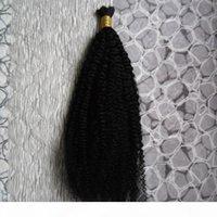 100g İnsan Örgü Saç Toplu Afro Kinky Kıvırcık Brezilyalı Saç Toplu Sarışın Toplu 100% Doğal Çiğ Saç
