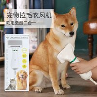 Blowing artifact cats, dogs, pets, hair dryer, brushing, cleaning, electric comb