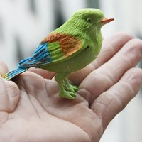 Manufacturer's novel toy creative simulation will call lovely color voice bird - new exotic toy products