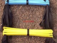Ücretsiz Kargo 5 M (16.5 metre) 9 Basamakları Futbol Eğitimi Hız Çeviklik Merdiveni + Taşıma Çantası Açık eğitim Fitness Ekipmanları merdiveni