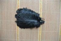 Commercio all'ingrosso 100 pz 5-8 pollici piuma di struzzo nero per centrotavola decorazione festa da tavola rifornimento di festa FORNITURA