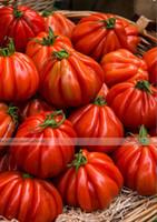 50 PZ, RARO ~ ESOTICO ~ HEIRLOOM Organic Super-Healthy Antiossidante-Ricco Tasty Ancient Giant Italiano Tromba Campana Semi di pomodoro