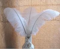 Pluma de plumas de avestruz centro de mesa para la decoración de la mesa de la boda Plumas de avestruz blancas naturales (muchos tamaños para que usted elija)
