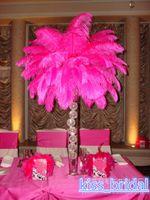 결혼식 파티 테이블 장식 웨딩 장식을위한 12 색 DIY 타조 깃털의 깃털 중앙 장식 2016 핫 판매 30-35CM