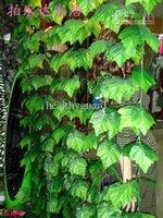 240 سنتيمتر الطول كروم العنب الاصطناعي الأخضر أوراق كبيرة لف الكرمة الأخضر أوراق اللبلاب زهرة الروطان ل ديكور المنزل بار مطعم ديكورات
