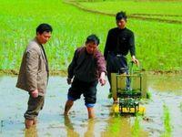 2018 2 sıra krank kolu pirinç fide, manuel çeltik çiftlik, pirinç ekme makinesi