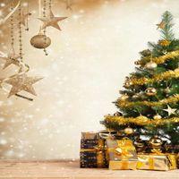 Telón de fondo de Navidad Vinilo Fotografía Custom FOTDDROPS PROP FECHO FONDO SD0808