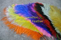 wholesale 100pcs lot 12- 14inch Ostrich Feather Plume White, P...
