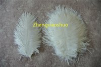Wholesale 100pcs lot white 5- 8inch ostrich feathers plumes f...