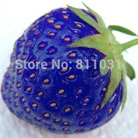 Hot selling 100pcs bag blue strawberry rare fruit vegetable ...