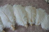 Commercio all'ingrosso 100pcs bianco piuma di struzzo plume per centrotavola di nozze decorazione di nozze Evento del partito Arredamento feative arredamento