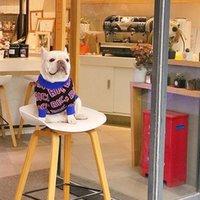 Cão do vestuário Pets de confecção de malhas Moda cartas Imprimir Jacquard Teddy Camisolas Casacos Inverno Inverno Elegante Espessa Schnauzer Trajes