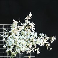 Artificial Flower Dancing Orchid Fake Home Wedding Party Floral Decor Decorative Flowers & Wreaths