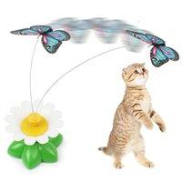 전기 조류 꽃 주위에 새끼 애완 동물 장난감 비행 나비 애타게 고양이 스틱