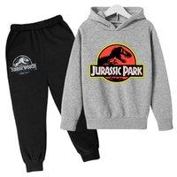 Stampa Animale Dinosauro World Boys Boakies Autunno Capispalla Bambini felpa con cappuccio Felpa Boy Vestiti per bambini Pullover Abiti 210911