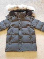 2021 IG Klasik Moda Gerçek Coyote Kürk Kış Erkek Expeditions Wyndham Açık Parka Tasarımcısı Aşağı Çarpıcı Kalın Ceket Sıcak