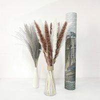 Natural Preserved Flowers Lagurus Artificial Florist Bouquet Wedding Decoration Wall Backdrop Dried Bunny Rabbit Tail Grass