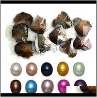 Loose Gemstones Jewelry Drop Dostawa 2021 Hurtownie Barwione Perły Naturalne Wewnątrz Party W Letnie Otwórz w domu Pearl Oysters z Packuum Packagin